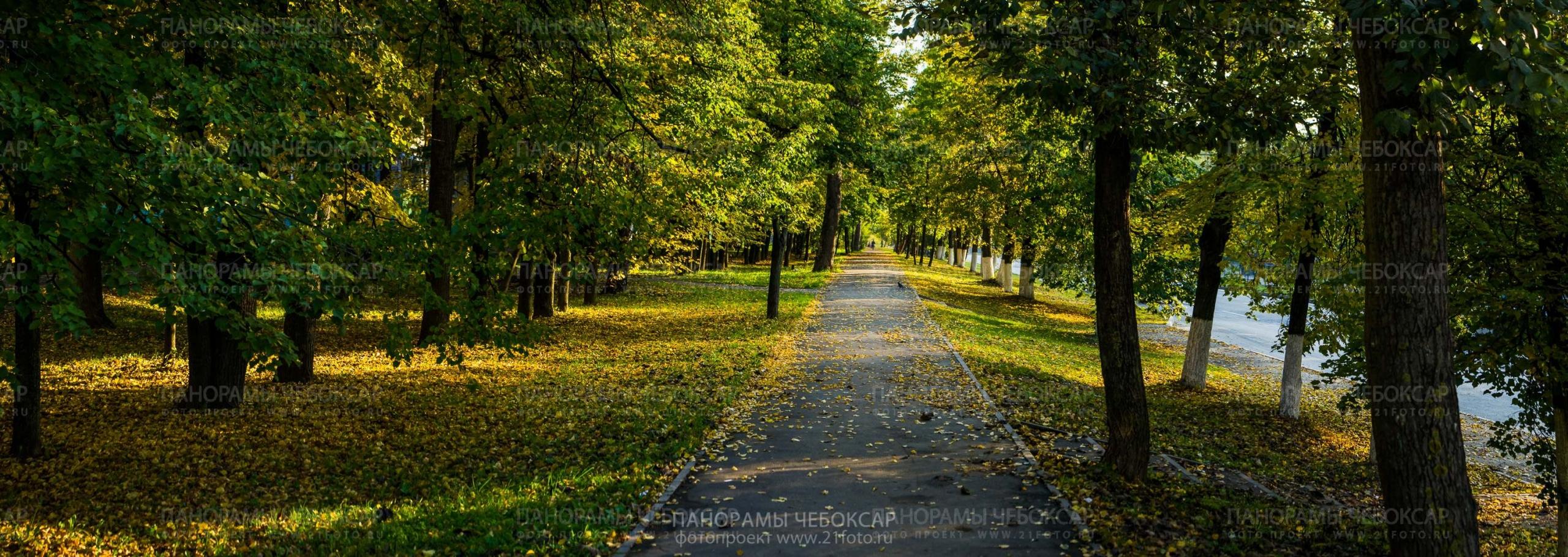 Осень на Московском Проспекте