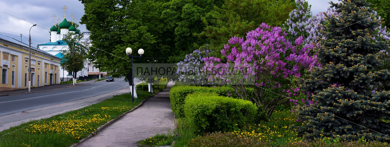 Весеннее цветение — Улица Константина Иванова  — Чебоксары